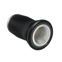 Brightgreen D700 10.5W LED Downlight 3000K